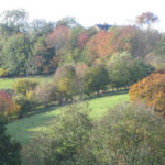 Autumn-View-from-CottagesOct-2010