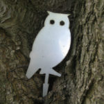Silver-Owl-GMF-May-14-011